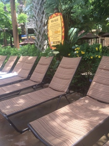Kidani Pool Chairs...extra comfy!